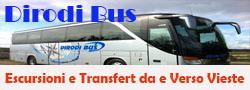 Dirodi Bus